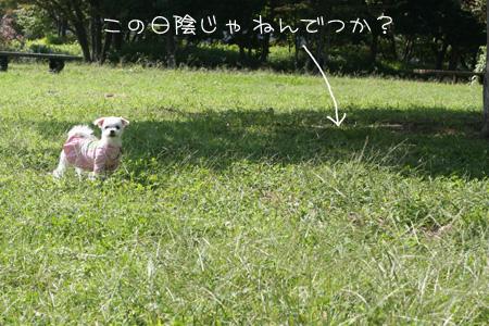 10_4_1020.jpg