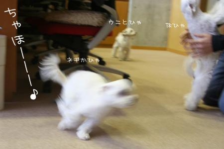 10_8_1370.jpg