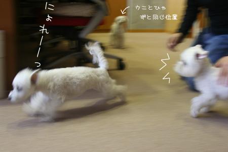 10_8_1388.jpg