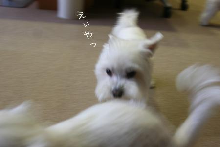 10_8_1412.jpg
