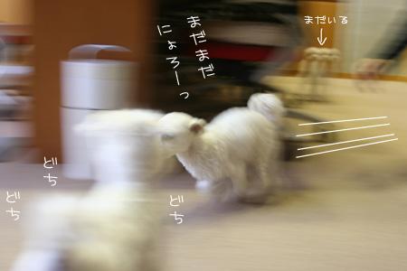 10_8_1424.jpg