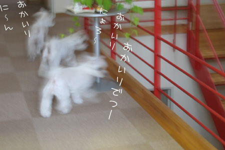 10_8_1549.jpg