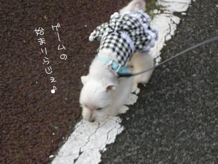 8_12_5004.jpg