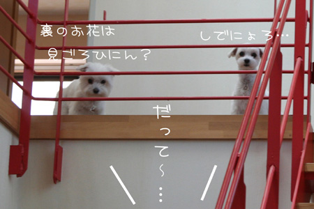 8_18_5208.jpg