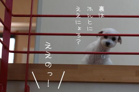 8_18_5234.jpg