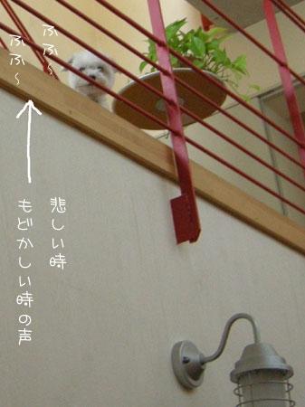 8_21_5253.jpg
