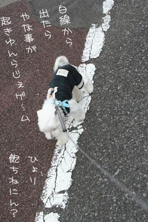 8_22_5472.jpg
