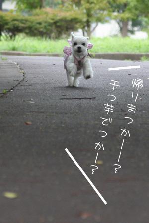 8_23_5714.jpg