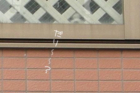 8_26_5347.jpg