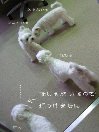 8_28_5406.jpg