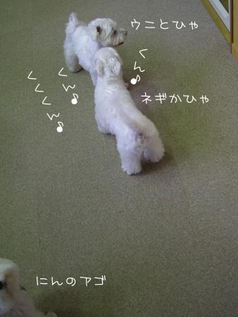 8_28_5413.jpg