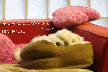 8_30_6486.jpg