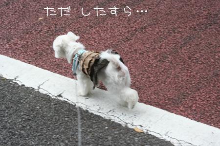 9_10_8587.jpg