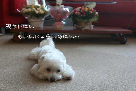 9_10_8801.jpg