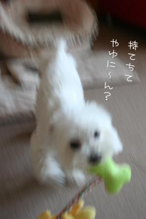 9_12_8969.jpg