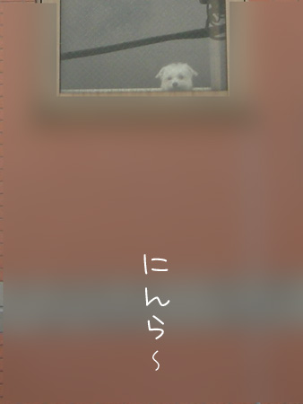 9_16_5617.jpg