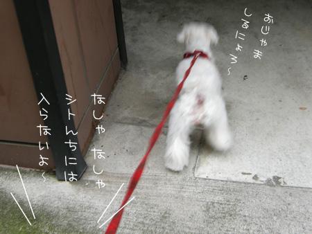 9_19_5697.jpg