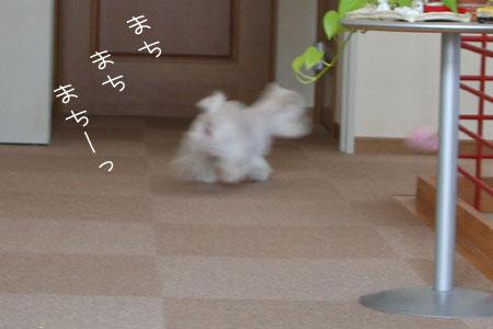9_1_6697.jpg