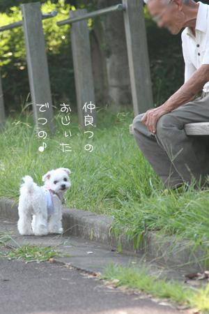 9_20_9607.jpg