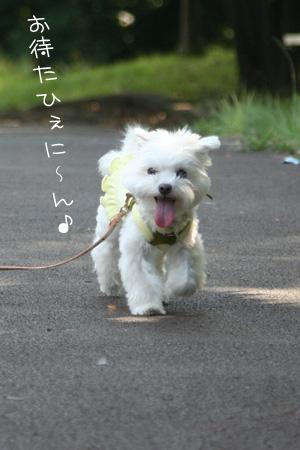 9_20_9609.jpg