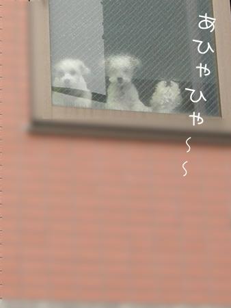 9_22_5770.jpg