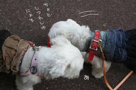 9_23_9792.jpg