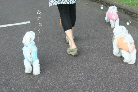 9_24_0040.jpg