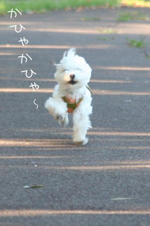 9_24_0091.jpg