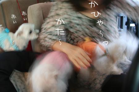 9_24_0202.jpg