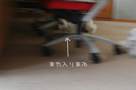 9_24_9907.jpg