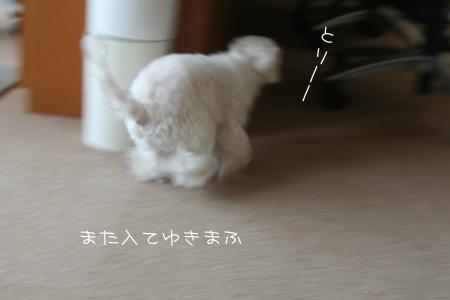 9_24_9912.jpg