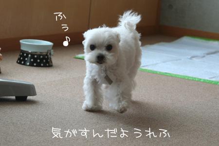 9_24_9920.jpg