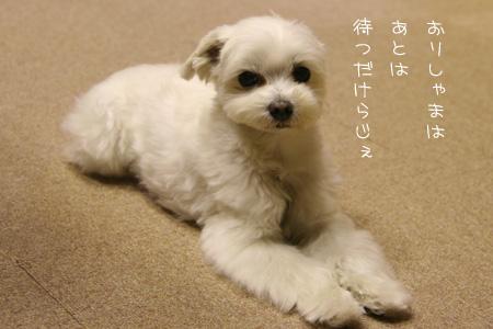 9_26_0370.jpg