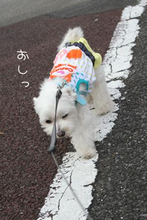 9_27_0397.jpg
