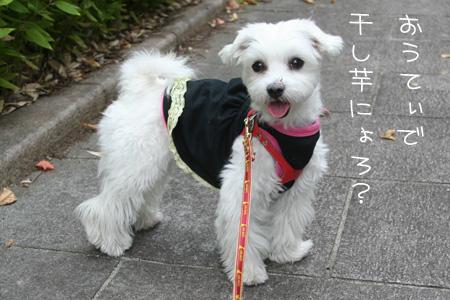 9_28_0519.jpg