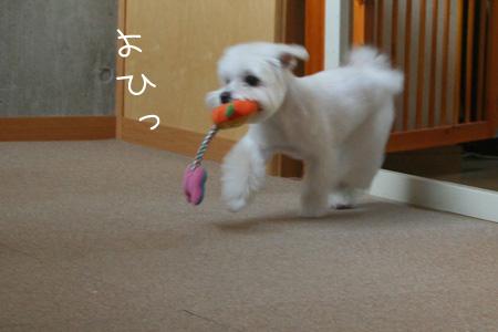 9_28_0573.jpg