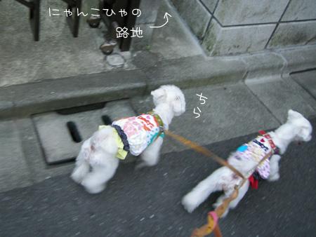 9_3_5543.jpg