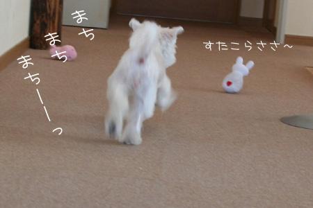 9_3_7205.jpg