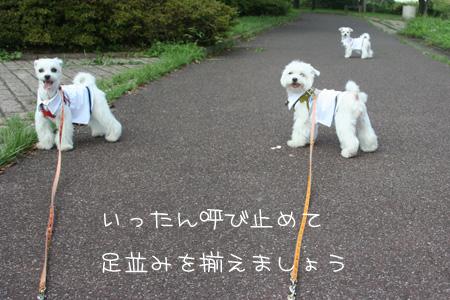 9_7_7790.jpg