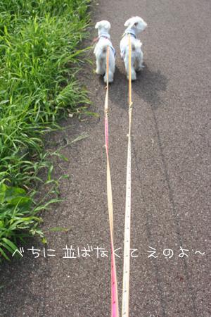 9_7_7793.jpg