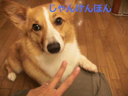 じゃんけんぽん1
