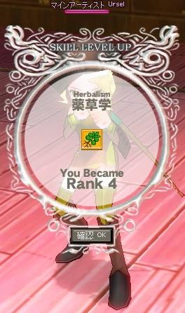yakusou4.jpg