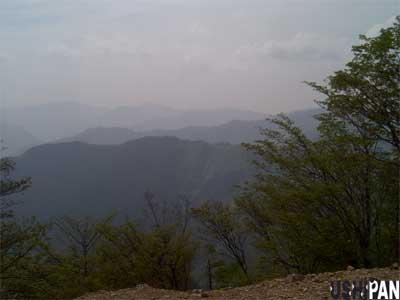 川乗山山頂2