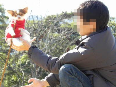 うずら・2010.1-no3 141