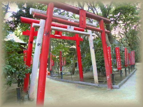 うずら・2011.2-no2 055