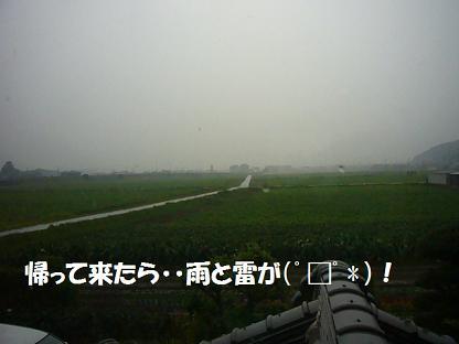 帰って来たら雨><