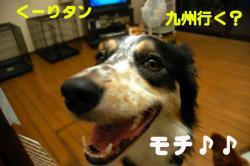 07.07.03blog.jpg