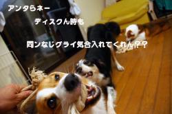 07.07.05blog.jpg