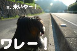 07.07.30blog5.jpg