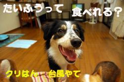 07.08.01blog1.jpg